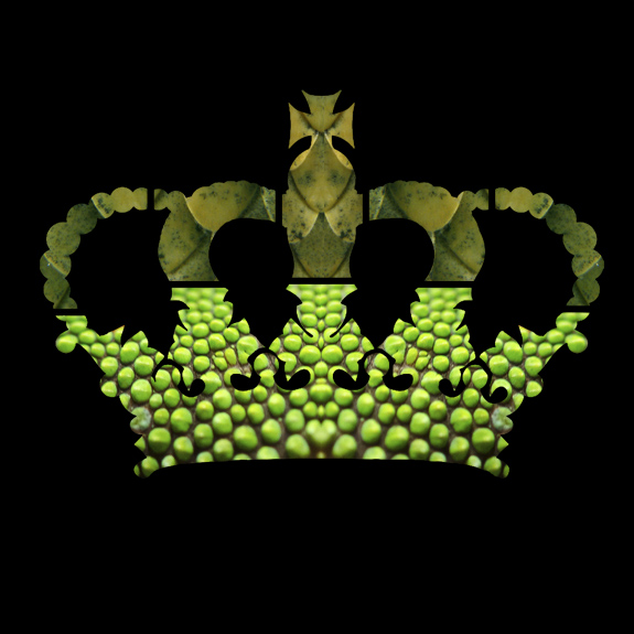 An image of a crown with the texture of lizard or reptile skin - by whatwentwrongwith.com