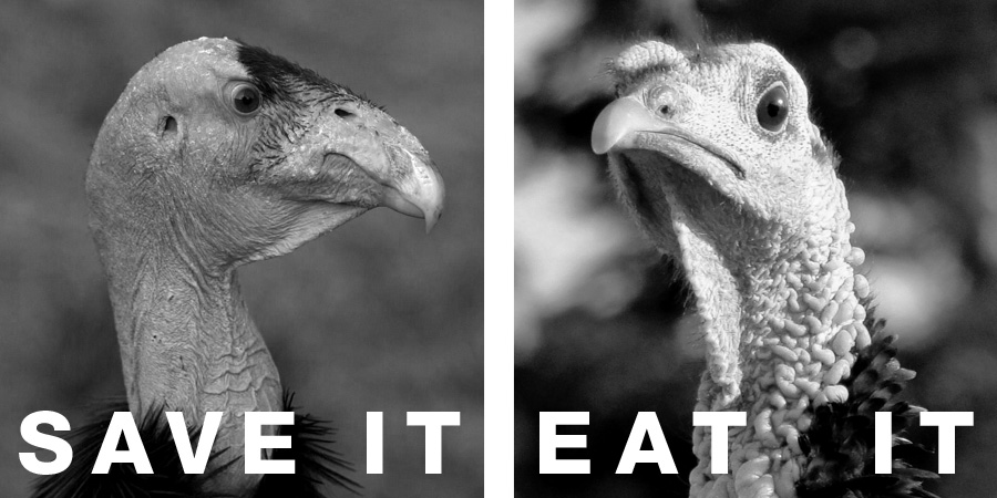 "An image of a condor and a turkey with the text ""Save It"" and ""Eat It"" to illustrate how humans treat certain species of animals. By whatwentwrongwith.com"